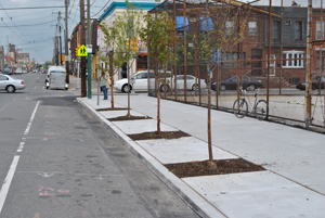 Tree Trenches in South Philadelphia; Photo Credit: Philadelphia Water Department