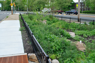 Swale and Rain Garden in South West Philadelphia; Photo Credit: Philadelphia Water Department